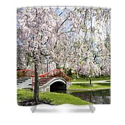 A Spring Walk Shower Curtain by Paul W Faust -  Impressions of Light