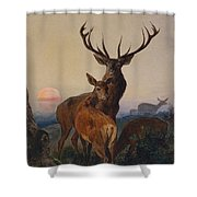 A Stag With Deer In A Wooded Landscape At Sunset Shower Curtain by Charles Jones