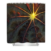 A Star Shower Curtain