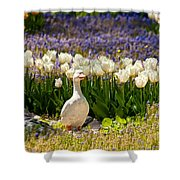 A Stone Duck Statue  Shower Curtain