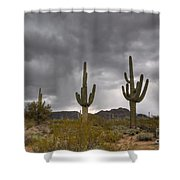 A Storm In The Sonoran Desert Shower Curtain