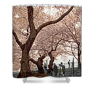 A Stroll In Central Park Shower Curtain