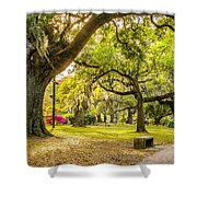 A Stroll In City Park Shower Curtain