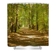 A Stroll In The Park Shower Curtain
