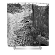 A Stroll In The Sand Shower Curtain