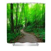 A Summer Trail Shower Curtain