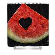 A Summer Valentine's Day Shower Curtain