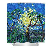 A Sunny Day For The Tree Shower Curtain