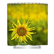 A Sunny Funny Day Shower Curtain