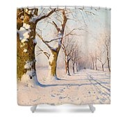 A Sunny Winter's Day Shower Curtain