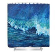A Surfer's Dream Shower Curtain