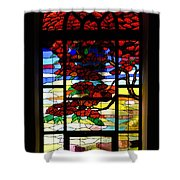 A Tale Of Windows And Magical Landscapes Shower Curtain