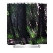 A Thin Veil Shower Curtain
