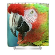 A Thing Of Beauty Is A Joy Forever Shower Curtain