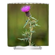 A Thorny Beauty Shower Curtain