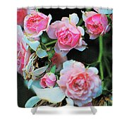 A Time For Roses Shower Curtain