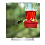 A Tiny Little Ruby-throated Hummingbirds Shower Curtain