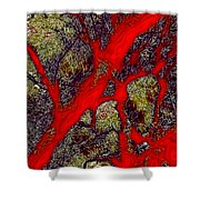 A Touch Of Autumn Abstract IIi Shower Curtain