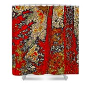 A Touch Of Autumn Abstract Vi Shower Curtain