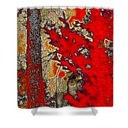 A Touch Of Autumn Abstract Vii Shower Curtain