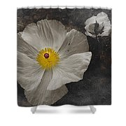 A Touch Of Color - Poppy Shower Curtain