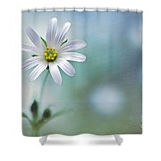 A Touch Of White Shower Curtain by Jacky Parker