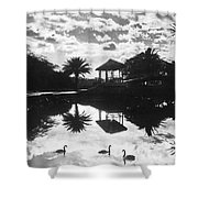 A Tranquil Scene In Hawaii Shower Curtain