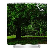A Tree And A Bench Shower Curtain