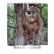 A Tree Creature Shower Curtain
