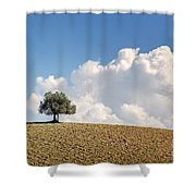 A Tree Shower Curtain