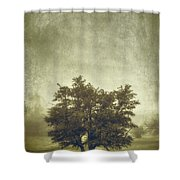 A Tree In The Fog 2 Shower Curtain by Scott Norris