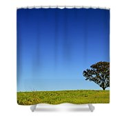 A Tree Stands Alone Shower Curtain