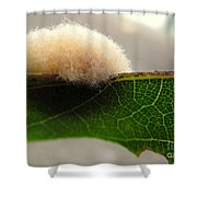 A Tribble On The Edge Shower Curtain