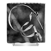 A Twist On Autumn In Black And White Shower Curtain