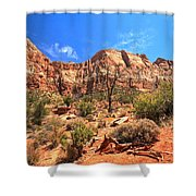 A View Along The Watchman Shower Curtain