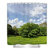 A View From Burrow Mump Shower Curtain
