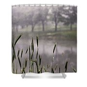 A View In The Mist Shower Curtain