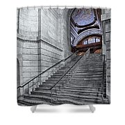 A View To The Mcgraw Rotunda Nypl Shower Curtain