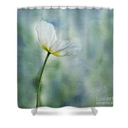 A Vision Of Delight Shower Curtain
