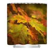 A Vision Of Fall Shower Curtain
