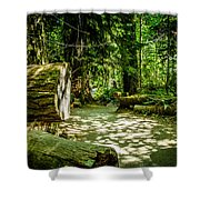 A Walk Among The Giants Collection 3 Shower Curtain