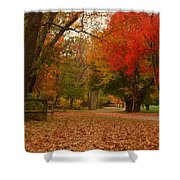 A Walk In Autumn - Holmdel Park Shower Curtain