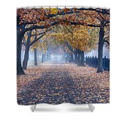 A Walk In Salem Fog Shower Curtain