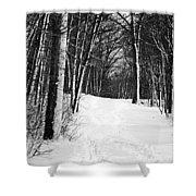 A Walk In Snow Shower Curtain