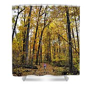 A Walk In The Dune Land Forest Shower Curtain