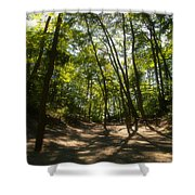 A Walk In The Dunes Shower Curtain