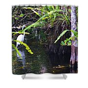 A Walk In The Glades Shower Curtain