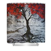A Walk In The Twilight Shower Curtain