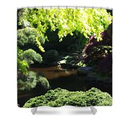 A Walk In The Woods 10 Shower Curtain