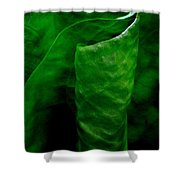 A Walk In The Woods 2 Shower Curtain